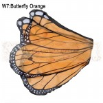 Butterfly Orange Wing
